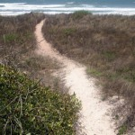 Esser Health- Beach Path
